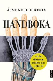 Handboka: Alt du vil vite om hendene dine og litt til