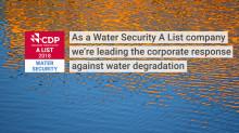 Wasser und Klima: Nachhaltigkeits-Anstrengungen von Ford als global führend ausgezeichnet