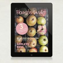 Blomsterlandet lanserar Ipad-magasin