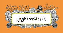Västernorrlands bästa idéer gör upp om slutsegern i jagharenide.nu 2015