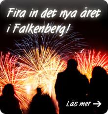 Nyårsfirande för Singlar 45 till 100 år i Falkenberg