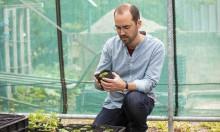 Så räddar Fredriksdal våra utrotningshotade växter
