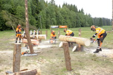 Great fun at Champs of Logging's safety shows