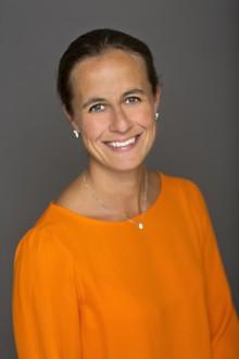 """SvD, A Perfect Guide, """"Hur blir börsåret 2014?"""", krönika av Lisa Seligson, 25 januari 2014"""