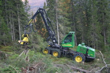 Gjør skogsdrift mer skånsom