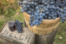 Press Release – Welch's says 2018 could be the Year of the Concord Grape  as 'mindfulness' is named the top food & beverage trend