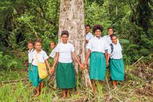 Brother beschermt samen met Cool Earth al tien jaar het regenwoud