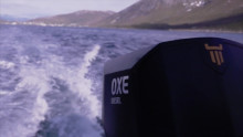 Hurtigruten Selects OXE Diesel For Their New Tender Boat