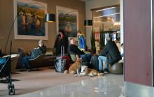 156 hundar, 1 katt och 1 papegoja firade nyår på Clarion Hotel Arlanda Airport