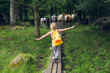 Vandra med kidsen - en del av Vandringens år i Skåne