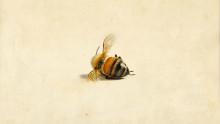 Bienes historie blir teater