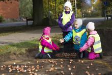 På lördag inviger vi den upprustade parken i Mörarp