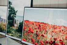 Tambur lanserar Summer of Gotland,  en hyllning till Sveriges somrigaste ö