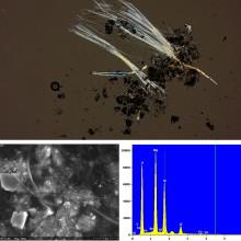 Millä menetelmillä asbestia tutkitaan?