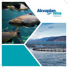 Brosjyre Akvakultur-rådgivning og forskning Akvaplan-niva