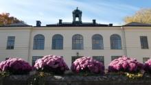 Näsby Slott öppnar krog