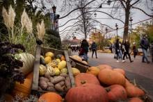 Efterårsferie og (u)hygge i Sverige