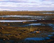 HaV ger 7,6 miljoner till miljöprojekt för kustvatten i norr och på västkusten
