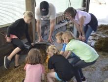 Lernen live: Grundschüler aus Oberbrügge auf Bauernhof-Entdeckungstour