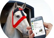 Almi Invest investerar i digital övervakning av hästar
