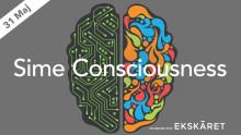 Sime Consciousness, 31 Maj på Rival i Stockholm