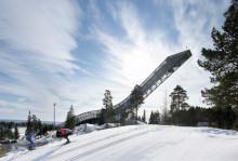 Всё, что вы хотели узнать о поездке на биатлон в Норвегию