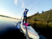 Här är några höjdpunkter på årets Allt för sjön