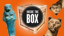 Mumier, DNA och Japan – vad göms i lådan?