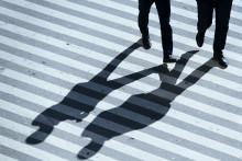 Kampen mot brottsligheten - vem har ansvaret?