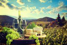 Aktiv ferie i Toscanas vinland