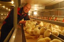 Närking blev Årets Äggföretagare