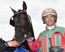 Danmarks bästa häst klar för final i Olympiatravet