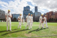 Howzat! Join cricketing legends to play in the All Out For Cricket in The City event