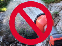 Bevattningsförbud i Partille har effekt
