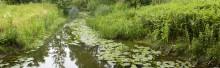 Pressinbjudan: Riksmöte i Lund om framgångsrikt vattenvårdsarbete