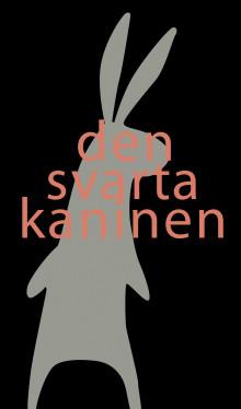 Barn på Palladium –Den svarta kaninen – en föreställning om att vara rädd med Malmö Akademiska orkester på Palladium Malmö 8 april