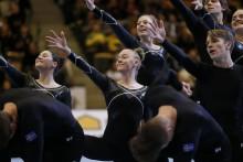 Fyra medaljer för de svenska trupperna på NM i gymnastik