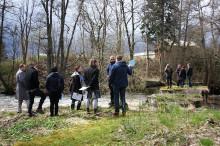 WWF och Älvräddarna kritiska till vattenkraftsprojekt i Svartån
