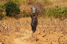 Pressinbjudan – Ny rapport från Röda Korset: Katastrofer glöms bort trots rekordår för humanitär hjälp
