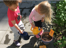 Svenska Bin tar hjälp av barnen: Mata bina!