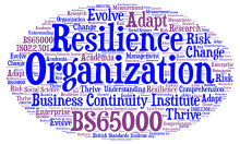 The development of organisational resilience