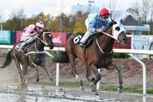 Barade och Jacob Johansen laddar för Svenskt Derby