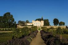 Servaali on aloittanut yhteistyön legendaarisen viinitalon kanssa