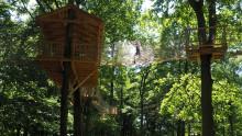 Skånes Djurpark säljer slut och begränsar antalet gäster
