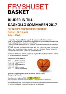 Fryshuset Basket Dagkollo 2017