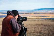 Brittiska journalister fascinerade av Hornborgasjön