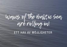 Guldpartner till Baltic Sea Future - ny Östersjöutställning