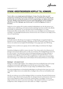 Studie: Kreditbedrägeri kopplat till konkurs