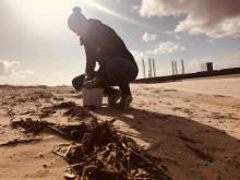 Vil du hjælpe dit lokale havmiljø?