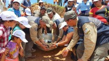 Skildpadder trues af æggetyve i Bolivia – miljøforkæmpere kommer til undsættelse